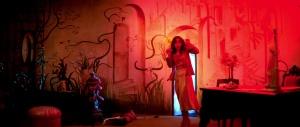 http://disinfo.com/2015/07/horror-occult-geekery-psychedelic-secret-dario-argentos-suspiria/